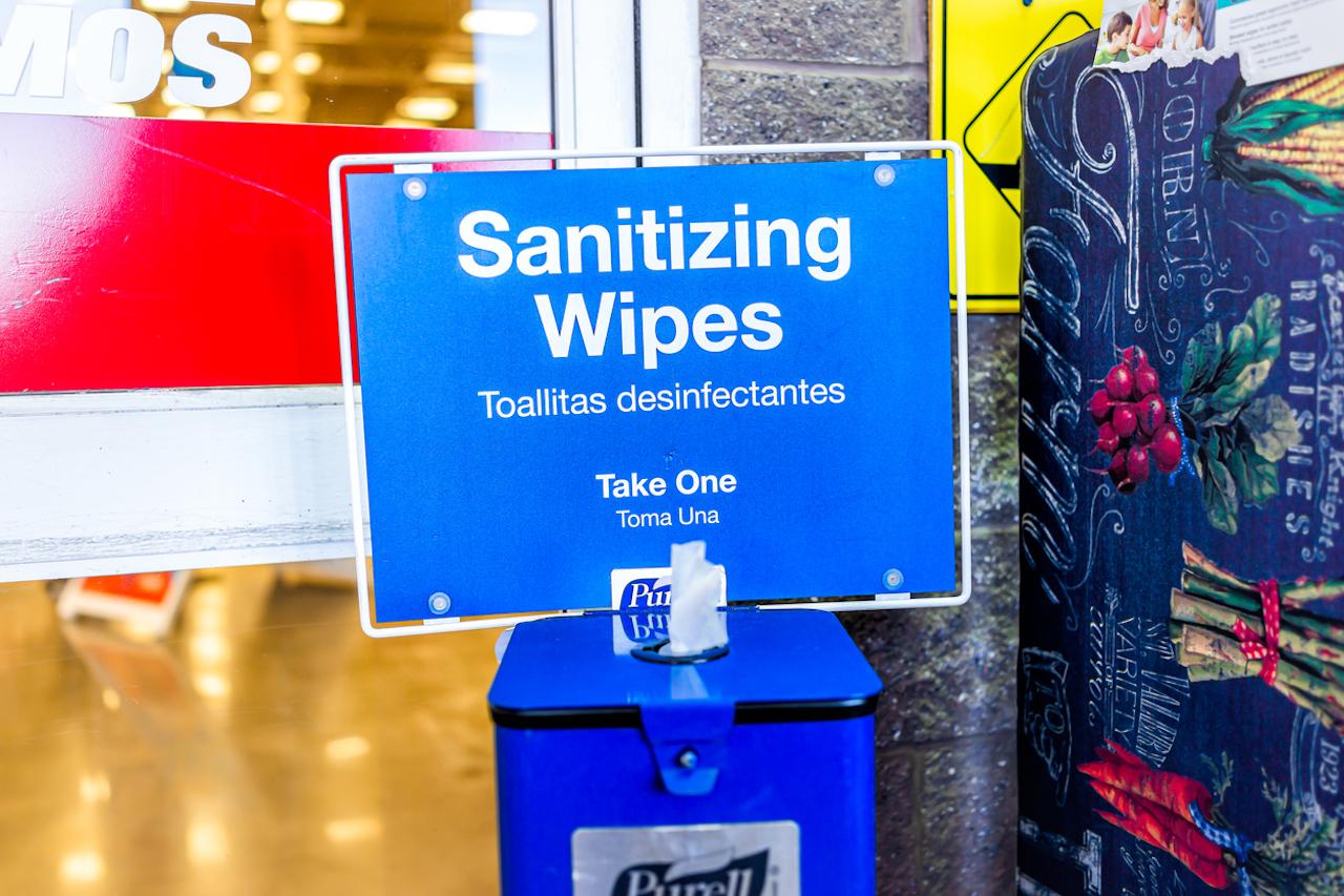 sanitizing wipes Lowes