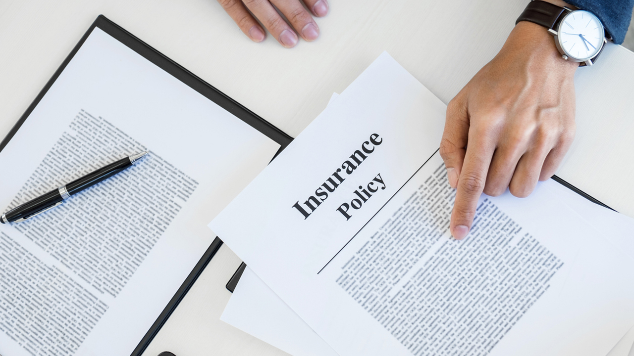 PLM Insurance Policy